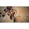 12 10 42 514 grand canyon 22 4