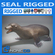 Rigged Seal 3D Model