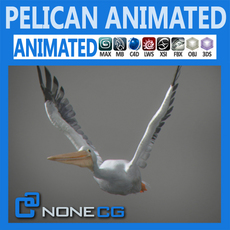 Animated Pelican 3D Model
