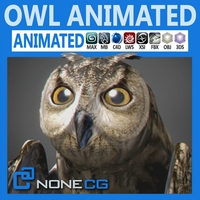 Animated Owl 3D Model
