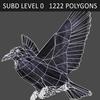 10 36 13 318 crow 06 4