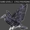 10 36 13 63 crow 07 4