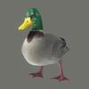 10 39 45 333 duck 03 4