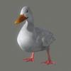 10 39 45 762 duck white 02 4