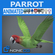 Animated Wild Parrot 3D Model
