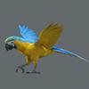10 53 05 399 parrot 0002 4