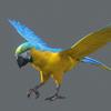 10 53 05 742 parrot 0006 4