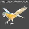 10 53 05 998 parrot 0007 4