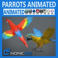 Animated Parrots Pack 3D Model