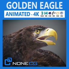 Animated Golden Eagle 3D Model