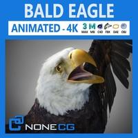 Animated Bald Eagle 3D Model