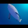 18 06 05 21 shark 3 4