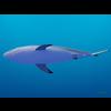 18 06 07 868 shark 7 4