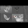 10 11 22 722 dove white 04b 4