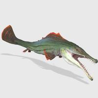 3D Goliath Tiger Fish Animated 3D Model