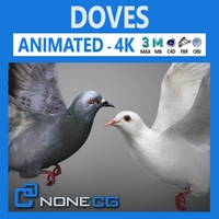Doves Animated 3D Model