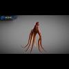 07 27 54 496 octopus 014 4
