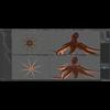 07 27 54 68 octopus 006 4