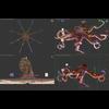 07 27 54 83 octopus 004 4