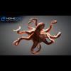 07 27 55 333 octopus 025 4